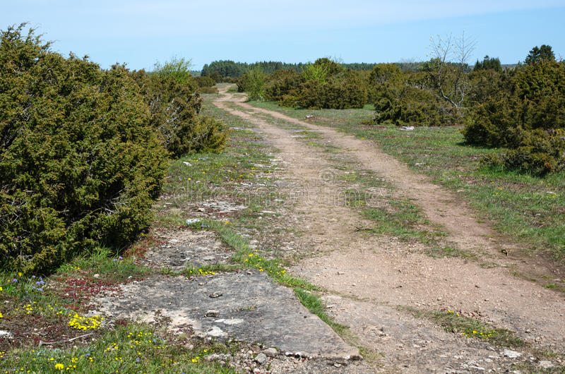 Download Winding dirt road stock photo. Image of explore, grass - 54368746