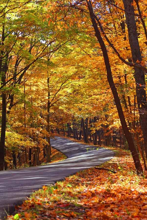 Winding Fall road royalty free stock photos