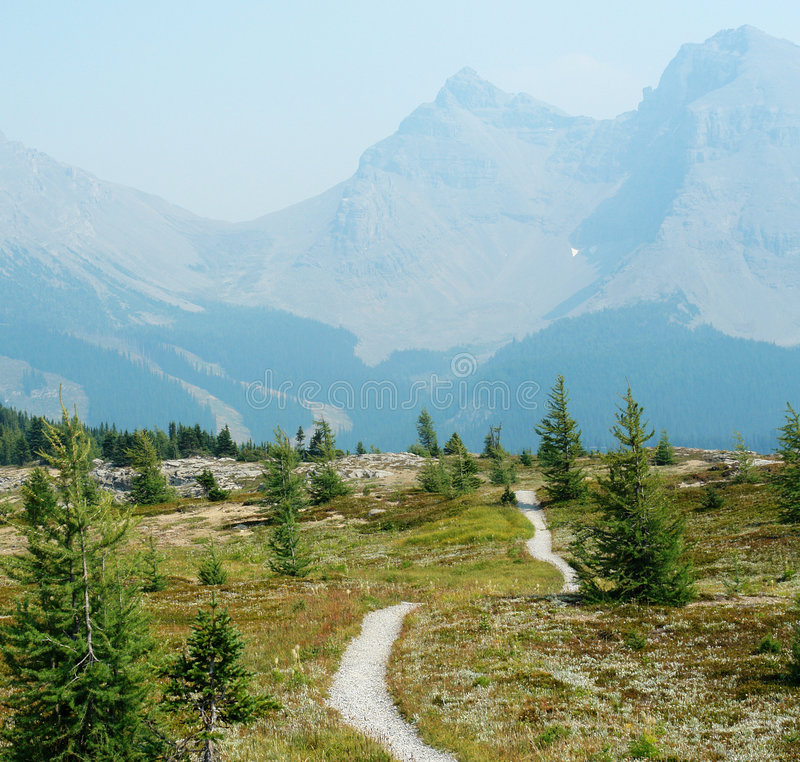 Winding hiking trail in sunshine meadows stock image