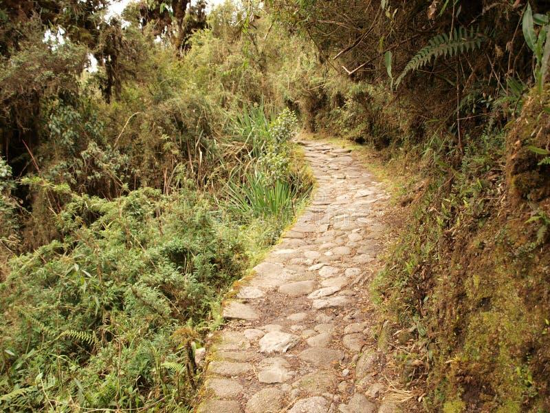 Winding Inca trail stock photos
