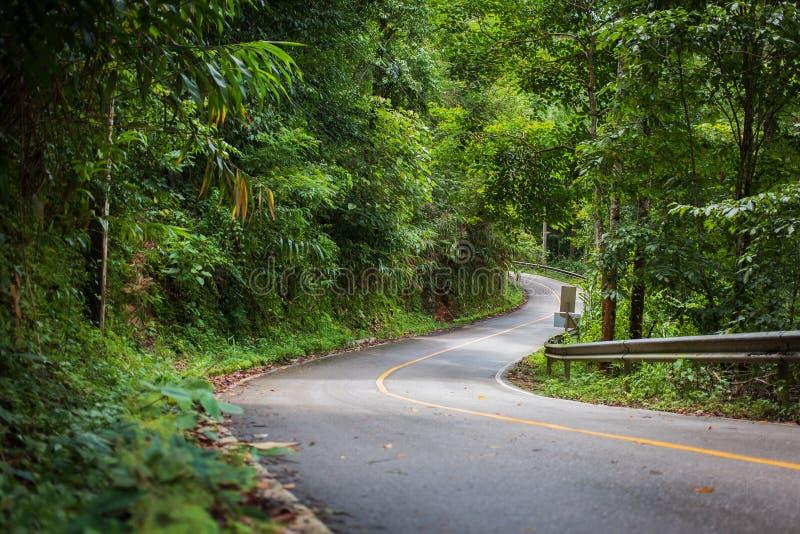 Winding Mountain Road, Północna Tajlandia zdjęcia royalty free