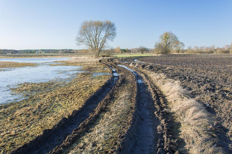 Winding muddy road through fields, a tree on the horizon and sky. View on a sunny day stock photography