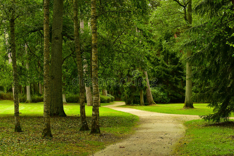 Winding park road. Winding road through the park, late summer season royalty free stock photography