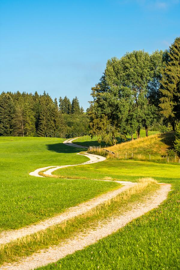 Winding Path walkway in a green natural environment in bavaria, south Germany. Winding Path walkway in a natural environment in bavaria, south Germany royalty free stock photos