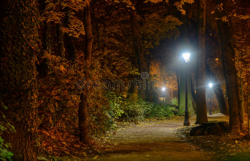 Winding pathway through colorful autumn woodland illuminated at night by street lamps in a tranquil scene. Winding pathway through colorful autumn woodland royalty free stock images