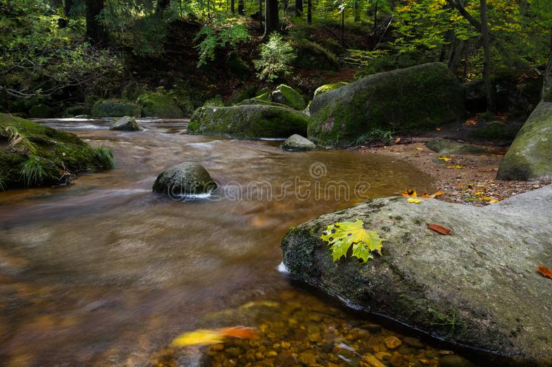 Winding river in the forest. Winding river in the forest with big stone in foreground stock photography