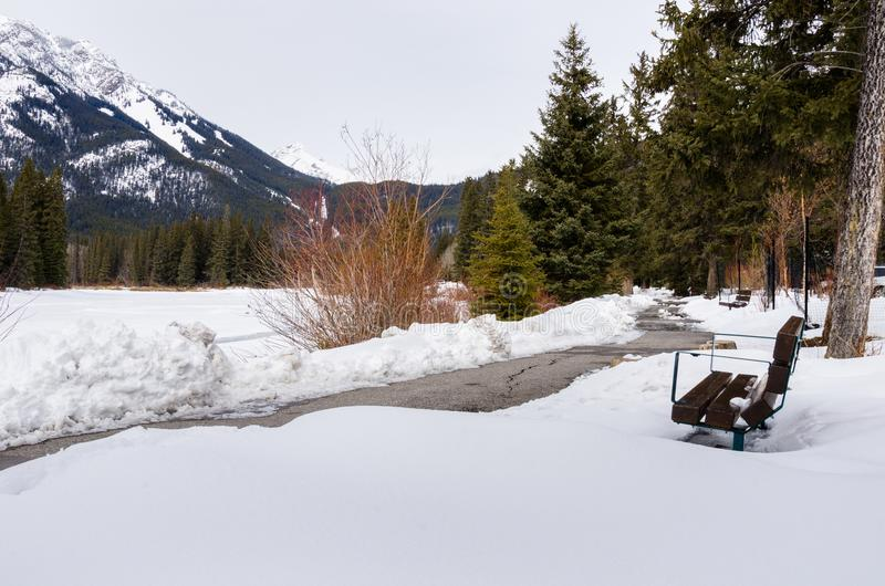 Winding Riverside Path Cleared of Snow. Winter Mountain Landscape with a Winding Riverside Path lined with Wooden Benches under Cloudy Sky. Banff, AB, Canada royalty free stock photos
