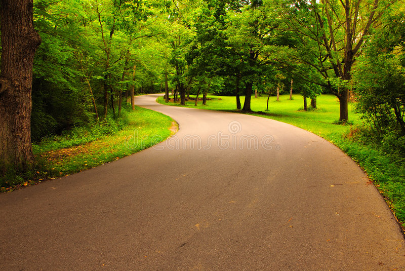 Winding Road. This is a shot of a winding road in a small country forest. It is located in Ohio royalty free stock photos
