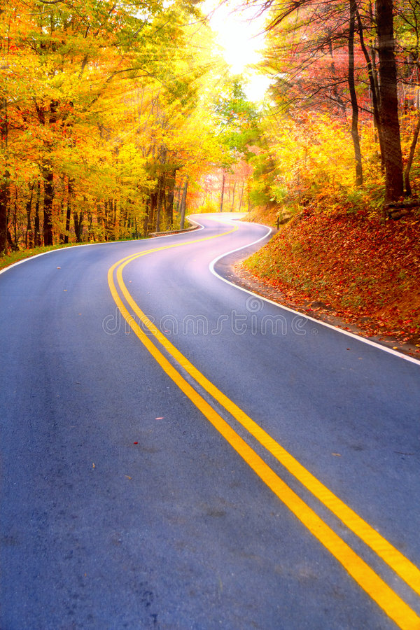Free Winding Road Royalty Free Stock Photography - 6310027