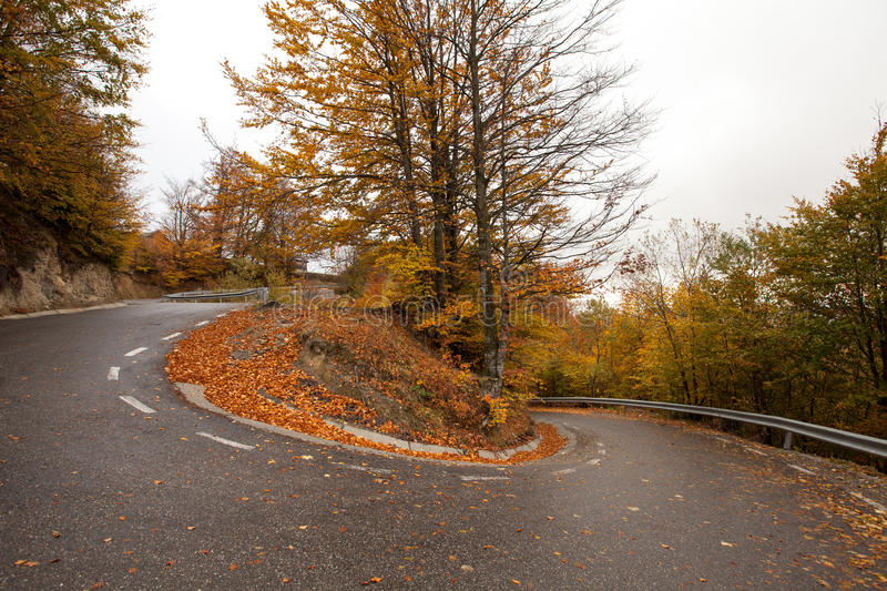 Winding road. Asphalted mountain road winding through trees in an autumn day stock image