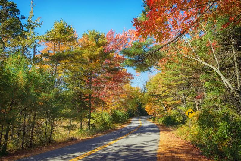 Winding road through autumn in New England. Winding road curves through colorful autumn foliage in New England royalty free stock photo