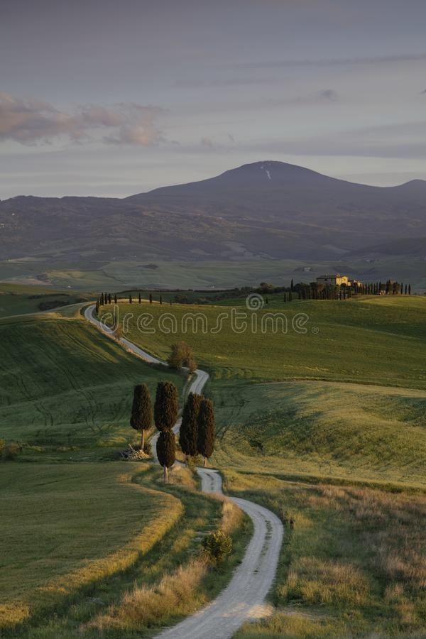 Winding road and cypress trees and farmhouse in the rolling hills and fields of Tuscany Italy royalty free stock images