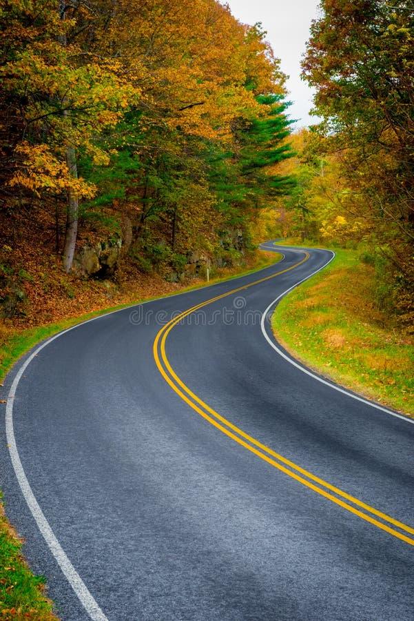 Winding Road. A winding road through fall foliage stock photo