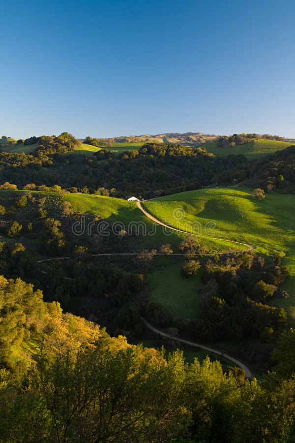 Winding Road on Green Hills stock photo