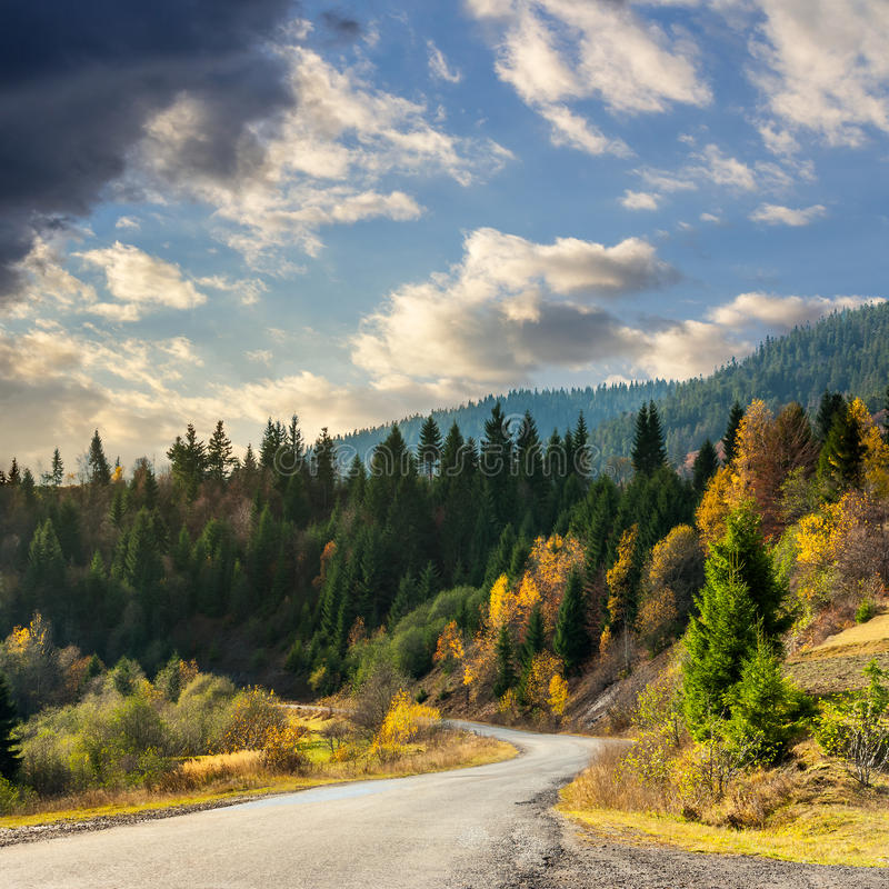 Winding road to forest in mountains royalty free stock photo