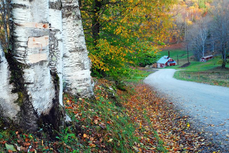 A winding rural road in autumn in Vermont stock image