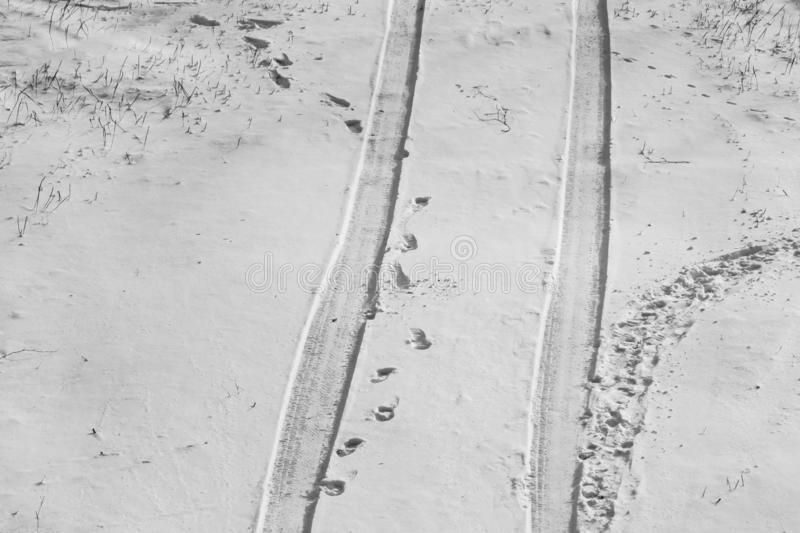 Winding snow car trail through winter landscape and footprints in the snow. Black and white photo royalty free stock image