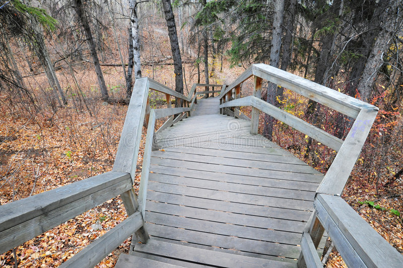 Winding stairway in forest stock photos