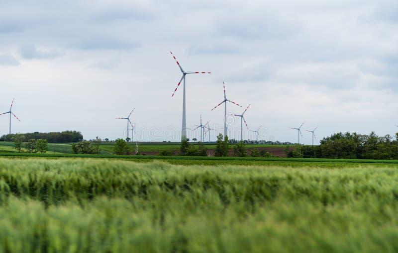 Windkraftanlage auf grünen Feldern in der Sommerzeit Natürliche Windkraftanlagen und stützbare umweltfreundliche Energiequelle stockbild