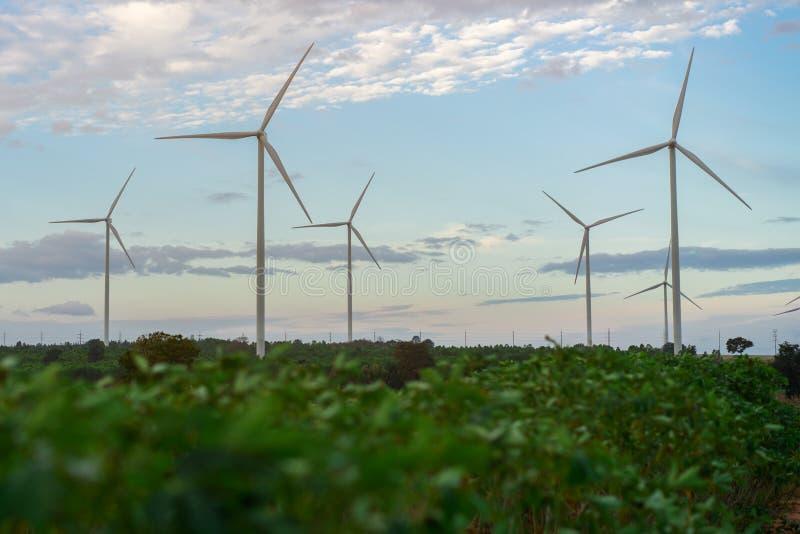Windkraftanlage-Bauernhof, Wind-Energie-Konzept lizenzfreies stockfoto