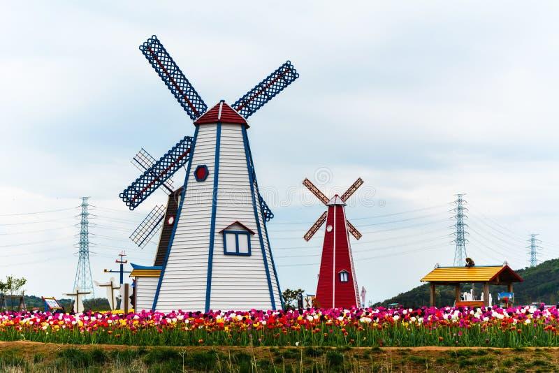 Windkraftanlage im Tulpengarten stockfotografie