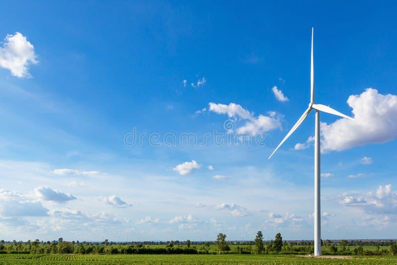 Windkraftanlagen auf dem Gebiet gegen den blauen Himmel, der Strom erzeugt stockbild