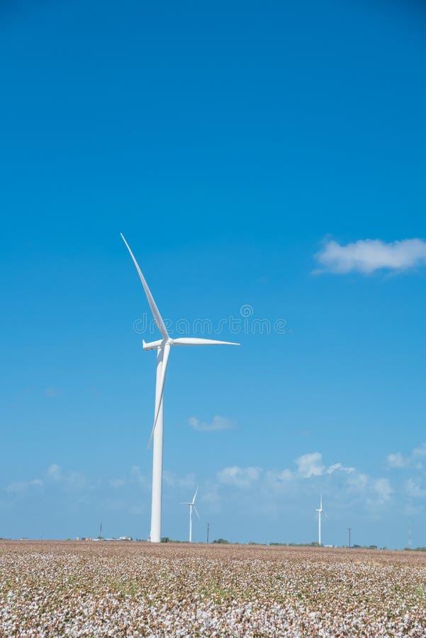 Windkraftanlagen bewirtschaften auf Baumwollfeld am Corpus Christi, Texas, USA stockbilder