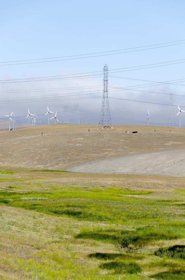 Windlandbouwbedrijf in de Gouden Heuvel van Livermore in Californië royalty-vrije stock fotografie