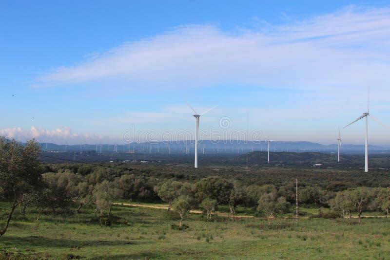 Windlandbouwbedrijf Fascinas, Andalusia, Spanje stock afbeelding