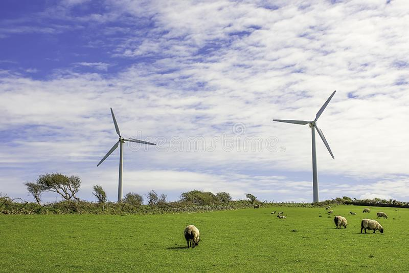 Windlandbouwbedrijf het UK stock foto