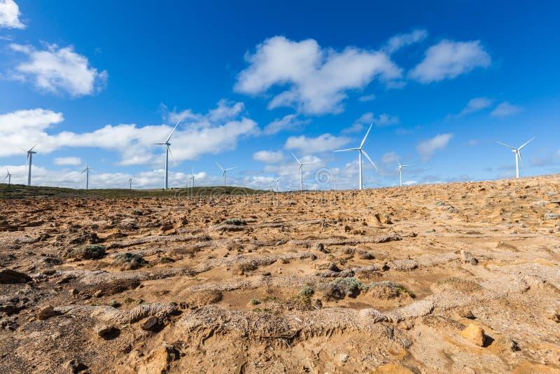 Windlandbouwbedrijf in Richmond, Australië die duurzame energie produceren royalty-vrije stock foto