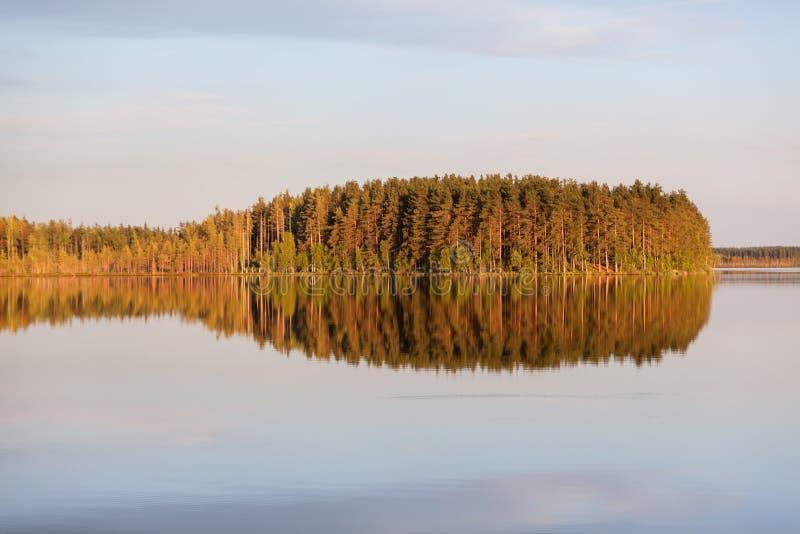 Windless вечер на озере с отражением острова на поверхности воды Karelia, Россия Горизонтальное изображение стоковая фотография rf