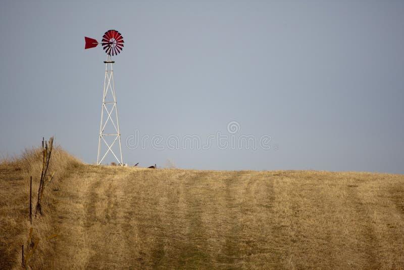 Windmühle auf dem Grasland lizenzfreie stockfotos