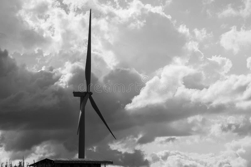 Windmühle auf Schwarzweiss stockbilder