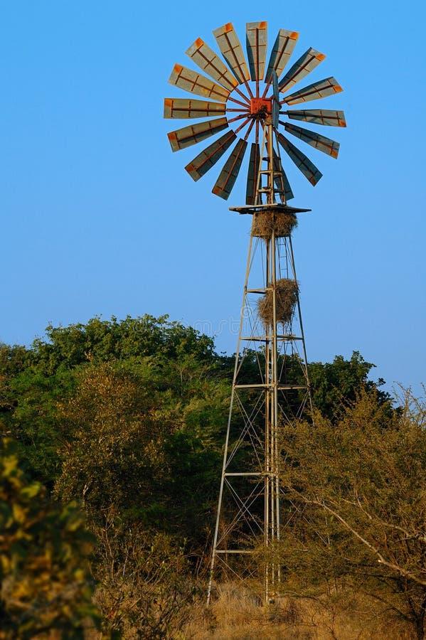 Windmühle bei einem Waterhole stockbild