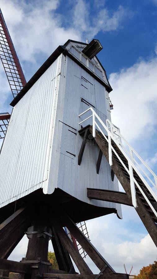 Windmühle in Brügge lizenzfreies stockfoto