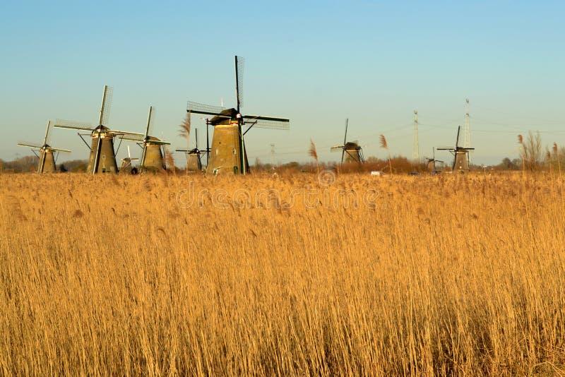 Windmühle die Niederlande Sun lizenzfreie stockfotografie