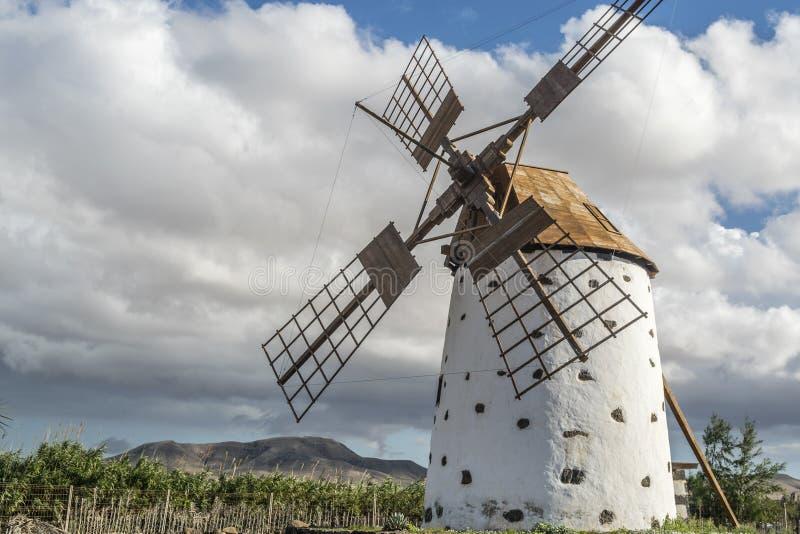 Windmühle in Fuerteventura stockfotografie