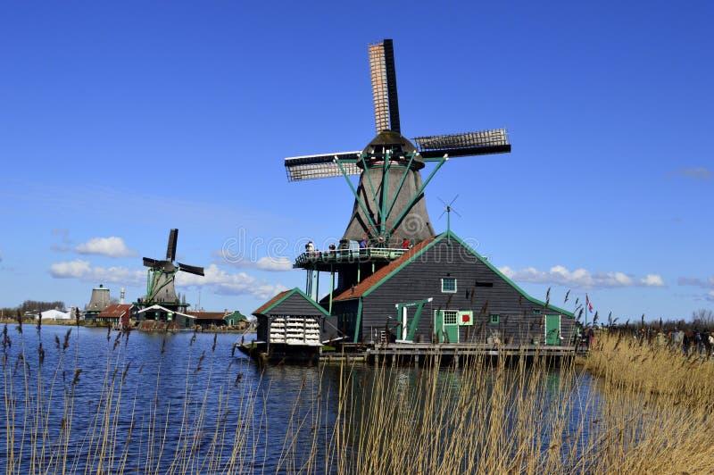 Windmühle in Holland stockfotografie