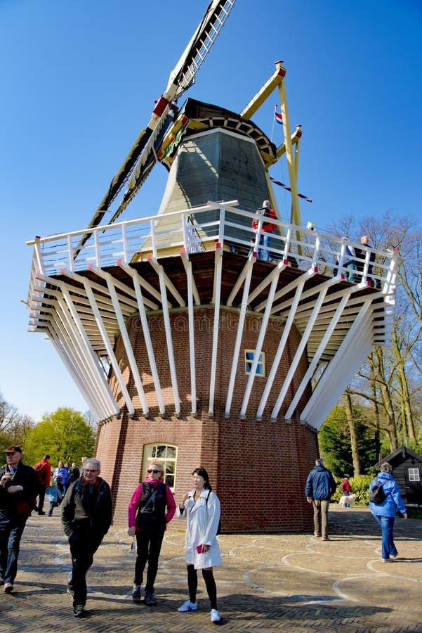 Windmühle in Keukenhof-Garten stockfotografie