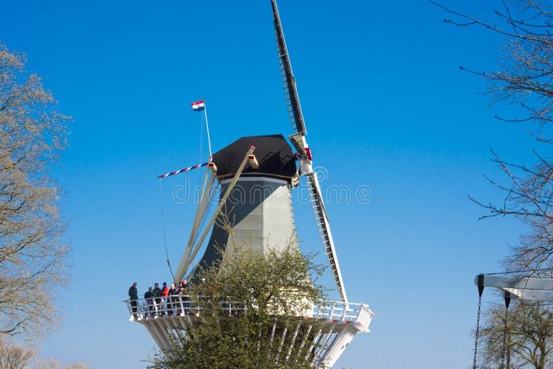 Windmühle in Keukenhof-Garten stockfoto
