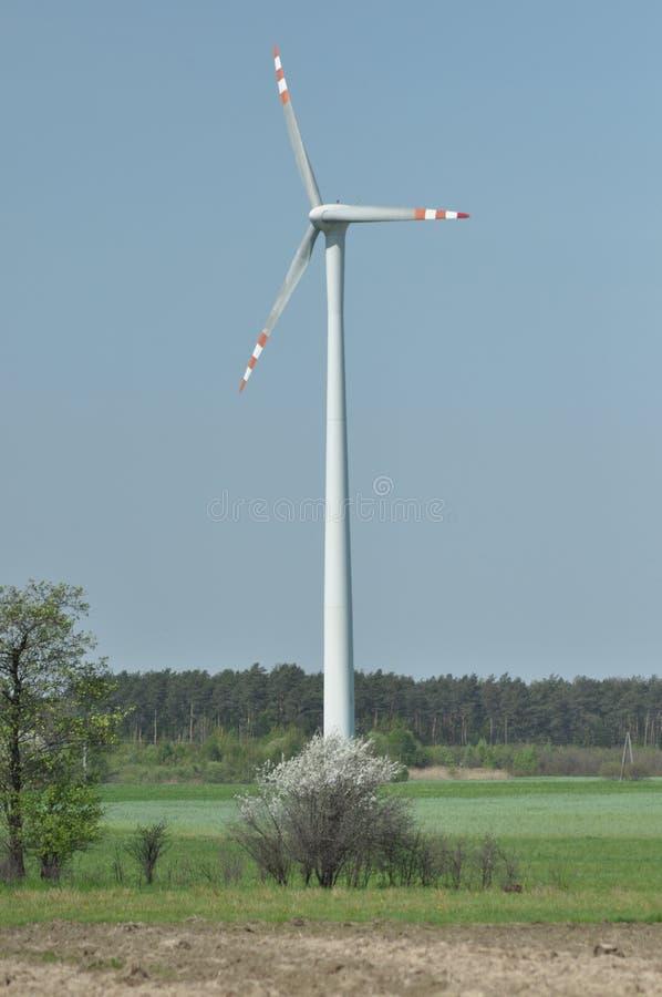 Windmühle, Produktion der grünen Energie lizenzfreie stockfotografie
