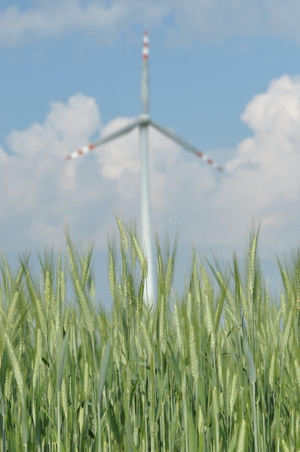 Windmühle, Produktion der grünen Energie stockfoto