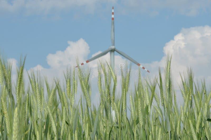 Windmühle, Produktion der grünen Energie lizenzfreies stockbild
