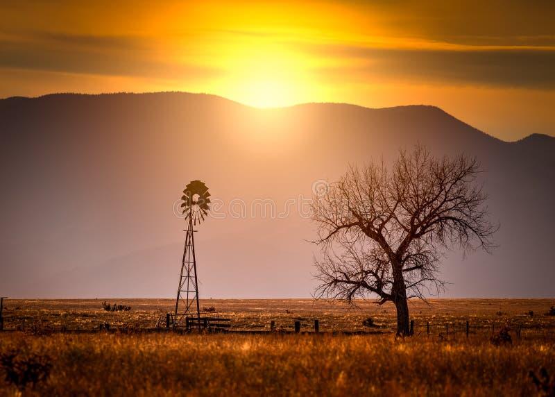 Windmühle und ein Baum bei Sonnenuntergang lizenzfreie stockbilder