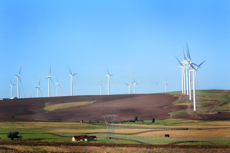 Windmühlen über Bauernhof stockfotos