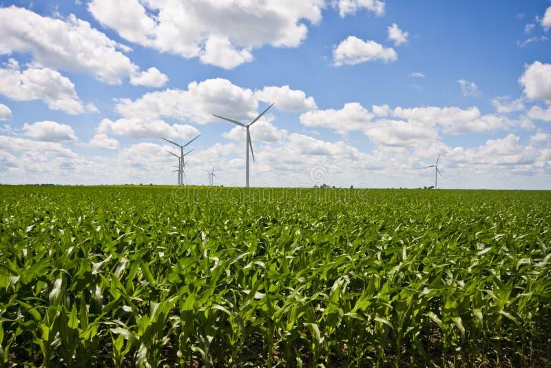 Windmühlen-Bauernhof und Getreidefelder stockbild