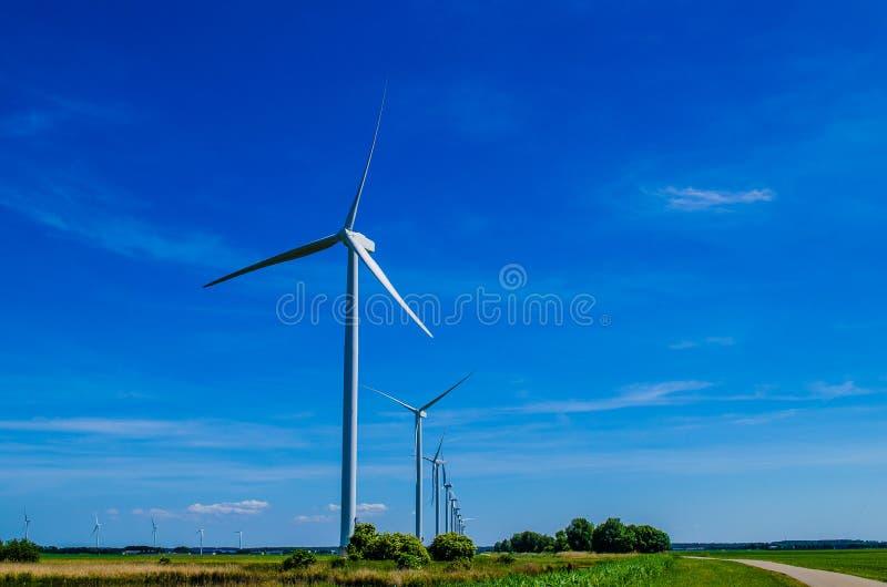 Windmühlen in Folge vom Boden lizenzfreie stockfotografie