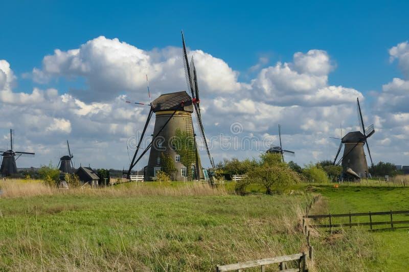 Windmühlen in Kinderdijk nahe Rotterdam, Holland lizenzfreie stockfotografie