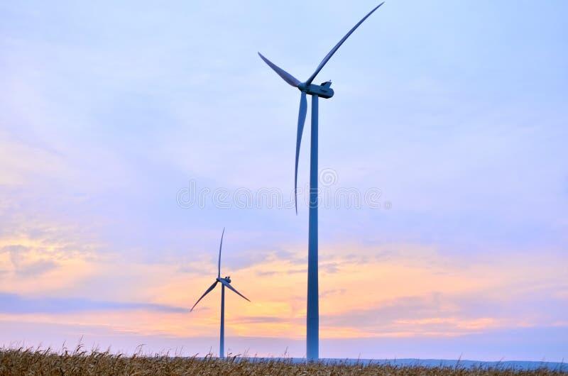 Windmühlen am Sonnenaufgang stockbild